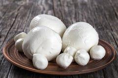 Mozzarella balls on a clay dish, close-up Stock Photos