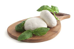 Mozzarella and basil Royalty Free Stock Photography
