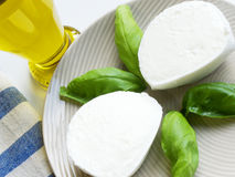 Mozzarella And Basil. Italian cuisine. A delicious closeup of mediterranean dish made with fresh sliced mozzarella, basil and olive oil Stock Images