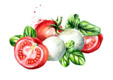Mozzarella with Basil and tomatoes. Watercolor hand drawn illustration, isolated on white background. Mozzarella with Basil and tomatoes. Watercolor hand drawn Stock Photo