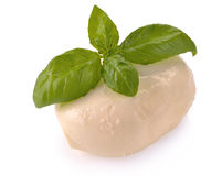 Mozzarella with basil Stock Images