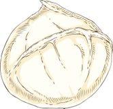 Mozzarella blanca del búfalo Foto de archivo libre de regalías