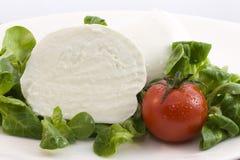 Mozzarella bufala and salad Stock Photo