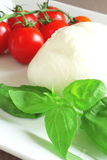 Mozzarella cheese Stock Images