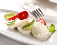 Mozzarella cheese Royalty Free Stock Photography