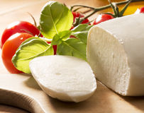 Mozzarella cheese Royalty Free Stock Photography