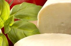 Mozzarella cheese Royalty Free Stock Images