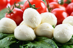 Mozzarella cheese balls, ripe cherry tomatoes and greens on the. Full background. horizontal format Royalty Free Stock Photography