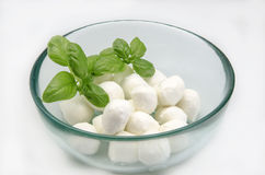 Mozzarella cheese Stock Image