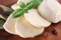 Mozzarella cheese and basil Stock Photography