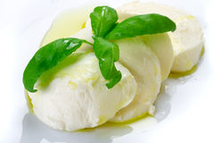 Mozzarella cheese with basil and olive oil Royalty Free Stock Photos