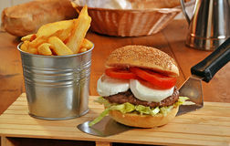 Mozzarella cheese burger Royalty Free Stock Image