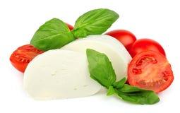 Mozzarella cheese with cherry Stock Photo
