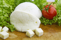 Mozzarella. Cheese on cutting board with lettuce and tomato Royalty Free Stock Photo