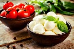 Mozzarella cheese Royalty Free Stock Photos