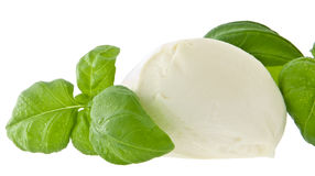 Mozzarella cheese and fresh basil. Isolated on white (with clipping path Royalty Free Stock Image