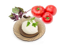 Mozzarella cheese on glass saucer, tomatoes and potherb. Ball of the fresh soaked mozzarella cheese on the dark glass saucer, tomatoes and twigs of parsley and Royalty Free Stock Photo