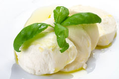 Mozzarella cheese with olive oil Royalty Free Stock Photography