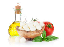 Mozzarella cheese, olive oil, tomato and basil Stock Photos