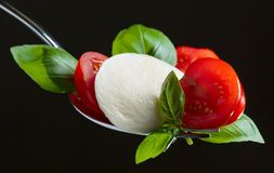 Mozzarella cheese with tomato cherry and green basil on a fork Stock Photos