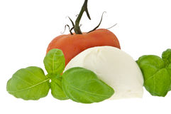 Mozzarella cheese, tomato and fresh basil Stock Images