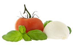 Mozzarella cheese, tomato and fresh basil Royalty Free Stock Image
