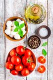 Mozzarella, cherry tomatoes, salt, pepper, basil and olive oil for caprese salad Royalty Free Stock Images
