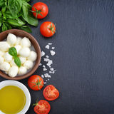 Mozzarella with cherry tomatos Stock Images