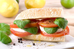 Mozzarella Ciabatta Stock Images