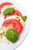 Mozzarella com tomates Imagem de Stock