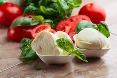 Mozzarella con il pomodoro ed il basilico Fotografia Stock Libera da Diritti