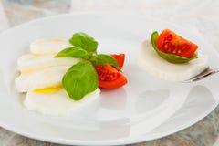 Mozzarella con los tomates y la albahaca Imagen de archivo libre de regalías
