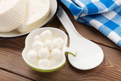 Mozzarella and curd cheese Stock Images