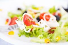 Mozzarella d'oignon de tomates sur la fourchette Images stock