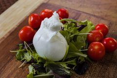 Mozzarella de Buffalo Photographie stock libre de droits