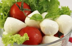 Mozzarella del bebé con los tomates del cóctel Imagen de archivo libre de regalías