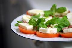 Mozzarella del pomodoro Immagine Stock