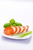 Mozzarella del tomate Imágenes de archivo libres de regalías