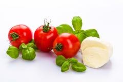 Mozzarella del tomate Foto de archivo libre de regalías
