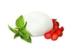 Mozzarella Di Bufala, świeży ser, włoski nabiał Zdjęcie Stock