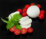 Mozzarella di Bufala, Frischkäse, italienisches Milchprodukt Lizenzfreie Stockbilder