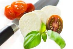 Mozzarella e bazil Fotografie Stock Libere da Diritti