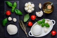 Mozzarella ed ingredienti di cottura Fotografia Stock Libera da Diritti