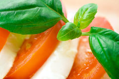 Mozzarella fresca Fotografia Stock