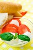Mozzarella fresca Immagine Stock