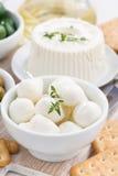 Mozzarella fresca e cracker, verticali Fotografie Stock Libere da Diritti