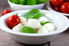 Mozzarella with fresh basil and tomatoes Royalty Free Stock Photos