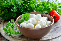 Mozzarella with fresh herbs Royalty Free Stock Image