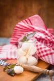 Mozzarella Royalty Free Stock Photo