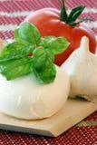 mozzarella with fresh organic basil leaf Stock Images